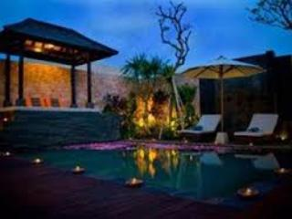 Sparkling Private Swimming Pool - Honeymoon Luxury Villas in Balangan, Bali - Kuta - rentals