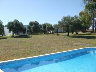 Cute bungalow in Arcos de la Frontera with air-conditioning, shared garden and pool - Villamartin vacation rentals