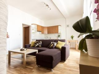 Cool flat with terrace in Prague city center - Prague vacation rentals