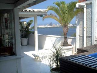 Best View Duplex PENTHOUSE - Rio de Janeiro vacation rentals