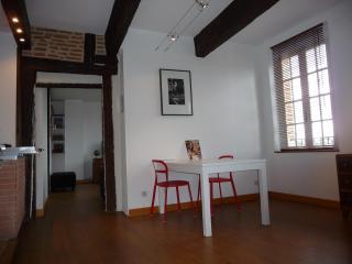 Appartement Cathédrale Quai Choiseul Albi - Albi vacation rentals