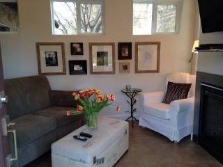 Cozy Mtn Apartment - Skiing, Golfing, Fishing... - Carbondale vacation rentals