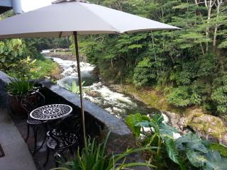 Reed's Island -Incredible Location -Yet Affordable - Hilo vacation rentals