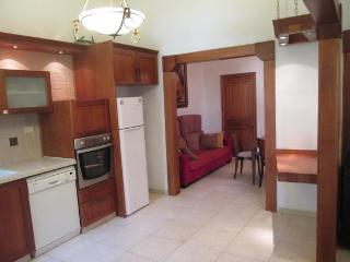 Fantastic large apt next to Old City - Jerusalem vacation rentals