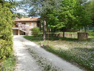 B&B in a rustique villa in the Urbino countryside, where art and nature go hand in hand - Urbino vacation rentals