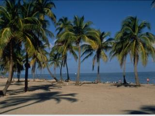 Key Biscayne 2 Bdrm/2 Bths Close to the Ocean^ - Key Biscayne vacation rentals