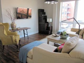 Downtown 2 Bedroom Condo - Central Virginia vacation rentals