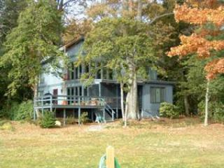 Back has deck & lots of windows facing river - Waterfront on Rappahannock River - White Stone - rentals