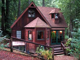 Romantic House with Internet Access and Hot Tub - Cazadero vacation rentals