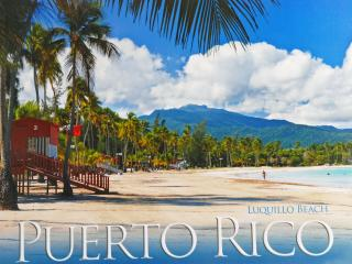Luquillo Paradise & Rainforest  Deluxe Villa . - Luquillo vacation rentals