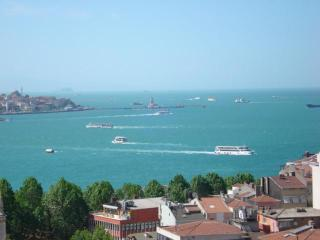 Sea View Fully Furnished Apartment from Owner - Istanbul vacation rentals