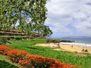 Nice 1 bedroom Condo in Wailea - Wailea vacation rentals