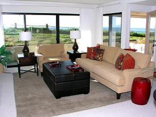 1 Bedroom, 1 Bathroom Vacation Rental in Solana Beach - (SUR68) - Solana Beach vacation rentals