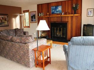 Silverthorne / Two Bedroom / Two Bath / Silver / Clubhouse - Silverthorne vacation rentals