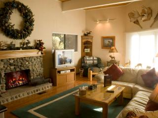 Super Condo in Incline Village (47FP) - Incline Village vacation rentals