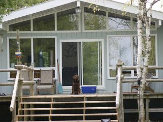 Memories Are Made cottage (#497) - Lions Head vacation rentals