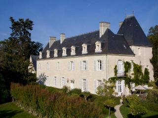 Chateau in the Loire Valley for Rent - Chateau de Valerie with Coach House - Beaumont-en-Veron vacation rentals