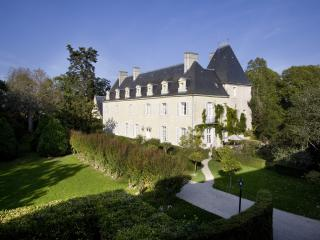 Chateau in the Loire Valley for Rent - Chateau de Valerie - Beaumont-en-Veron vacation rentals
