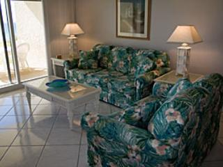 Beach House B104B - Image 1 - Miramar Beach - rentals