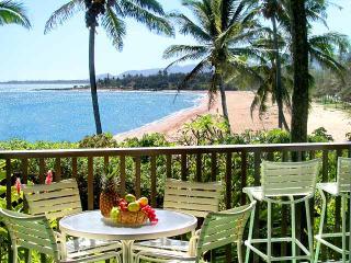 Wailua Bay 1 Bedroom  Ocean Front 103 - Wailua vacation rentals