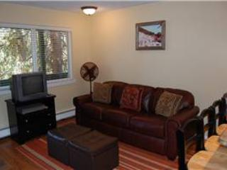 Hi Country Haus Unit 1016 - Image 1 - Winter Park - rentals