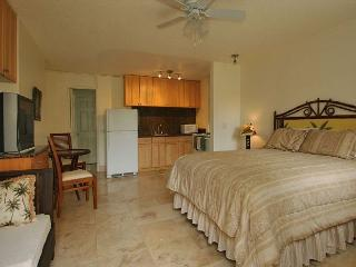 Beautifully Updated Studio Short Walk to Beaches and Attractions Full Kitchen - Honolulu vacation rentals