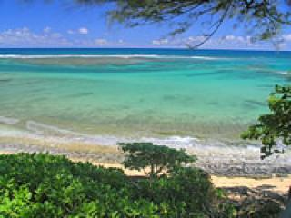 View from the balcony - Haena/Hanalei Beach, Northshore, Oceanfront Beauty - Haena - rentals