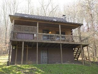 Pioneer Log Cabin Rental - South Bloomingville vacation rentals