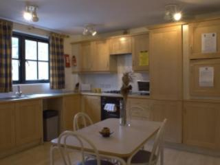 Bloomsbury adjacent - 1 bedroom  (2308) - London vacation rentals