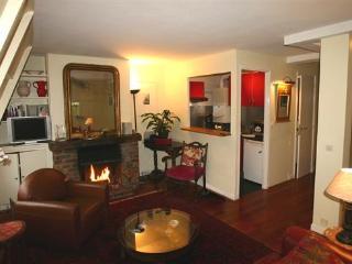 Ile Saint Louie- 2 bedroom Penthouse with Terrace (2271) - 15th Arrondissement Vaugirard vacation rentals