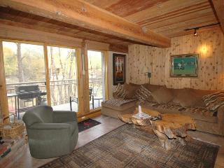 Chateau Roaring Fork Unit 18 - Aspen vacation rentals