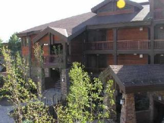 1BR2BA 5 Star Lakeside Bikepath Jacuzzi FP Garage - Frisco vacation rentals
