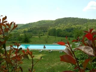 Villa Cini - Old Tuscan villa with 13 sleeps - Bucine vacation rentals