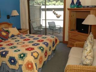 Comfortable 1 bedroom House in Black Butte Ranch - Black Butte Ranch vacation rentals