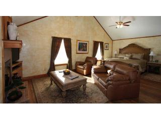 Tuscan Living Room - Appian Way Tuscan Country Property w/HotTub & View - Fredericksburg - rentals