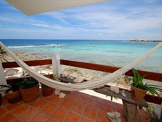 Lovely Condo with Internet Access and Garden - Akumal vacation rentals