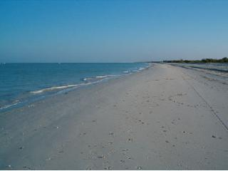Unspoiled white sandy Celestun Beach - Casa del Sol-Superb Comfort on Celestun Beach - Celestun - rentals