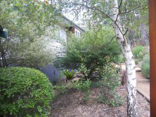 Carrington Cottages Blue Mountains Getaway - Mount Victoria vacation rentals