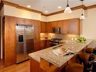 Nice Condo with Hot Tub and Wireless Internet - Snowmass Village vacation rentals