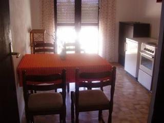 2326 A1(5) - Nin - Northern Dalmatia vacation rentals
