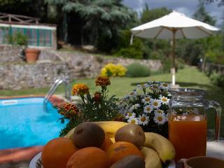 The Dreamful Holiday House ! - Castiglion Fiorentino vacation rentals