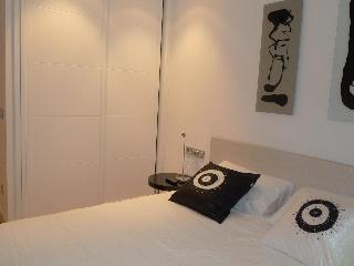 Miramar Attic - SanMarcial 28-INSTANT CONFIRMATION - San Sebastian - Donostia vacation rentals