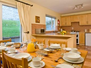 Fishermans Grove Holiday Homes (3 Bed) - Dunmore East vacation rentals