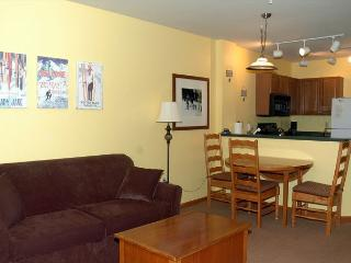 Ski in Ski out slopeside building one bedroom at the Zypher Mountain Lodge. - Winter Park vacation rentals