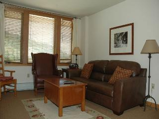 Ski in Ski out riverside building two bedroom at the Zypher Mountain Lodge. - Winter Park vacation rentals