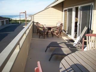 1861 Parliament Rd - Encinitas vacation rentals