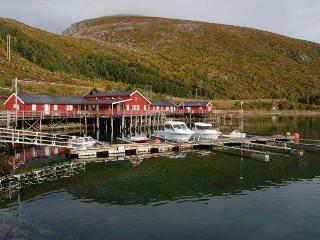 Fisherman Cabin in the heart of Lofoten Islands - Leknes vacation rentals