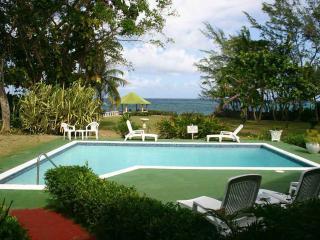 Villa Viento - Ocho Rios vacation rentals