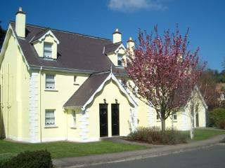 Lovely House with DVD Player and Microwave - Aughrim vacation rentals