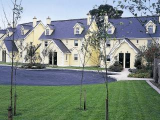 Lovely 3 bedroom Aughrim House with Dishwasher - Aughrim vacation rentals